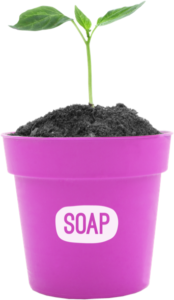 Soap Media plant pot